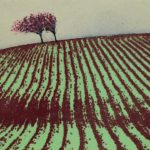 Red Furrows