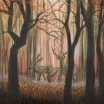 Transparent Wilderness
