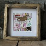 Pink Rose Songthrush