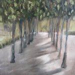 Avenue of Shadows
