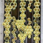 Wild Hive II